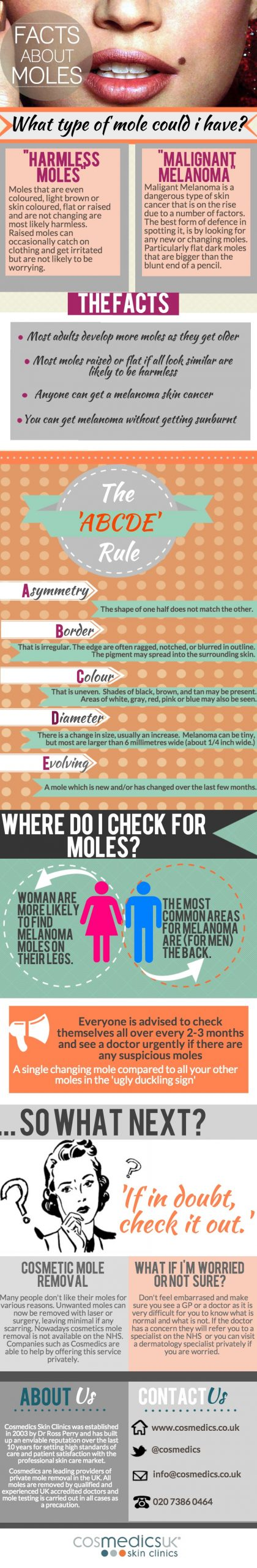 facts about moles infographic