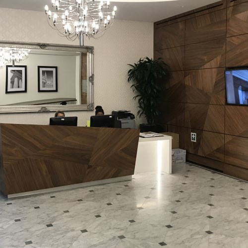 41 Harley Street Reception